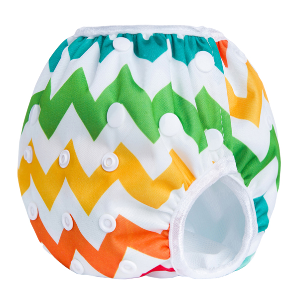 Chevron Rainbow Reusable Swim Diaper